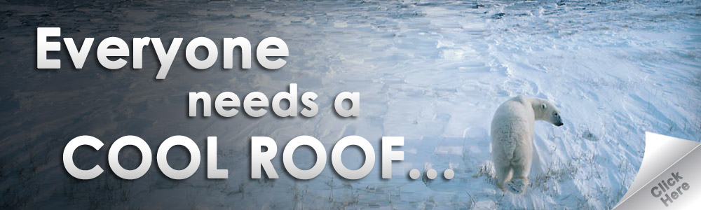 Find out why you need a cool roof